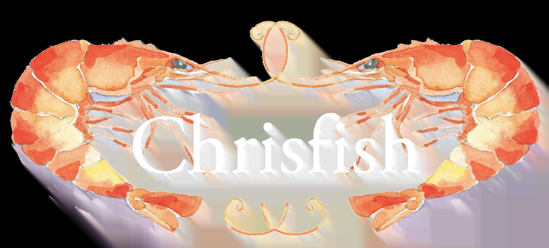 https://podi.dk/wp-content/uploads/2021/02/Chrisfish_samletlogo_highres_medium-12.png